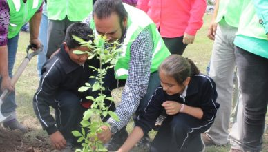 arrancó con éxito el programa de reforestación
